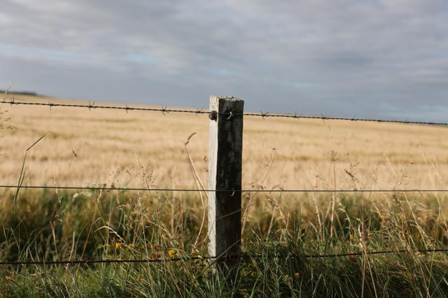 Image for Fence in Scotland